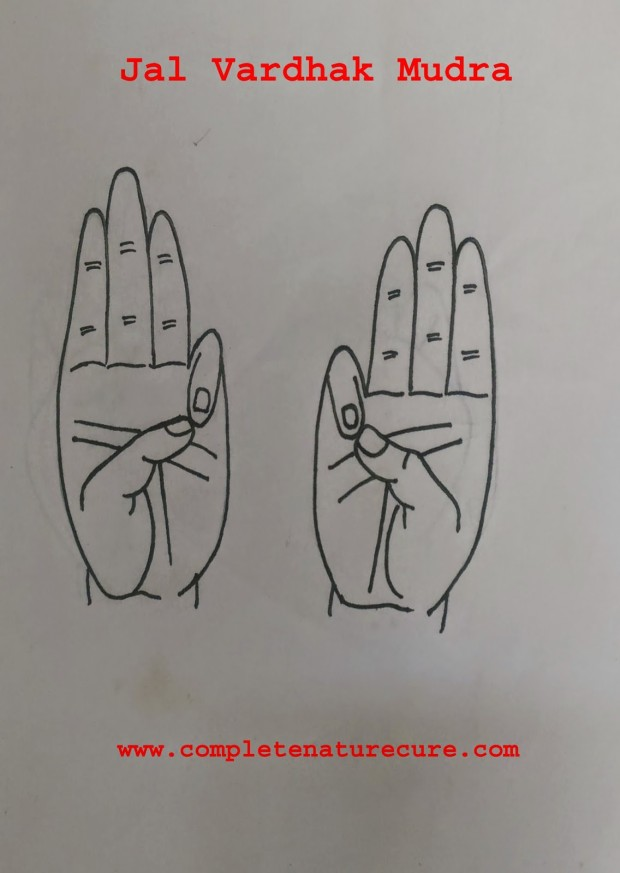 Mudra For Excessive Thirst