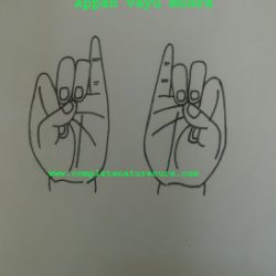 Mudra For Stomach  pain