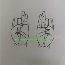 Mudra For Numbness in the hands and feet